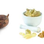 Früchte des Sheabutter-Baums und Myrrhequarz auf weißem Hintergrund